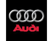 Audi (1397)