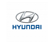 Hyundai (871)