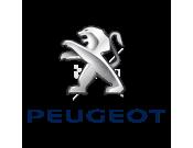 Peugeot (1265)